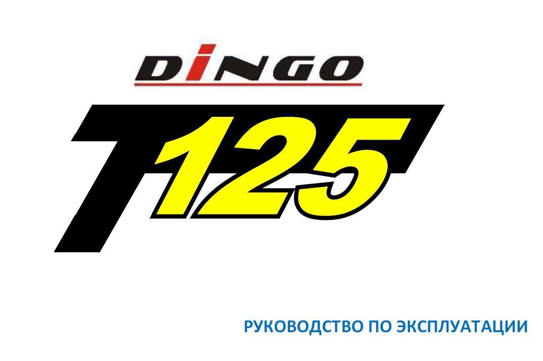 Irbis dingo T125